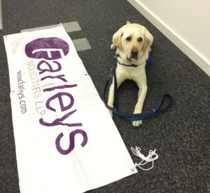Farleys and Support Dogs UK